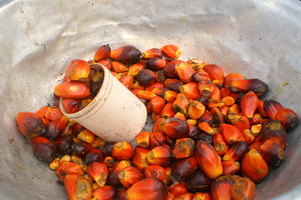Palmöl Naturseife