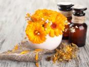 Kosmetik mit Ringelblume